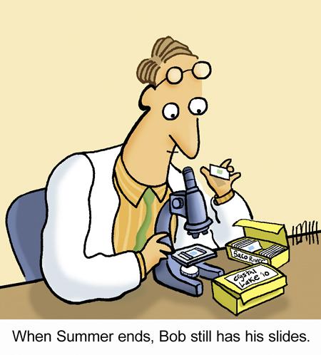Summer Slides