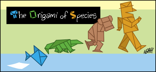 The Origin of Species as Origami