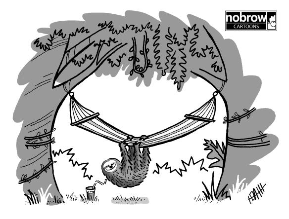 904 sloth hammock